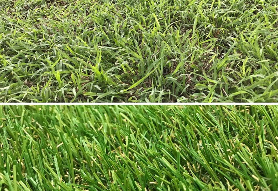 The Reason Why All Soccer Players Prefer Grass Over Turf
